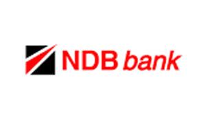 1_0026_28-ndb-logo-png